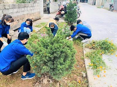 Huyện đoàn An Dương Hưởng ứng Ngày chủ nhật xanh toàn quốc