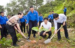 Ngọn lửa tình nguyện - Đoàn trường THPT Thái Phiên - Hải Phòng